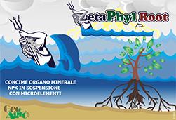 Zetaphyl Root